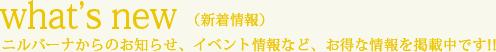 what's new(新着情報) ニルバーナからのお知らせ、イベント情報など、お得な情報を掲載中です!!